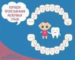 Схема прорезывания зубов у малышей – Порядок прорезывания зубов у детей: схема с фото